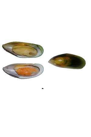 Mussels Green 1/2 shell M/青口